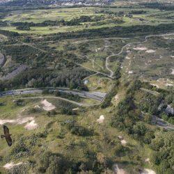 Zandpoort, Het Ecoduct Over De Zantvoortselaan
