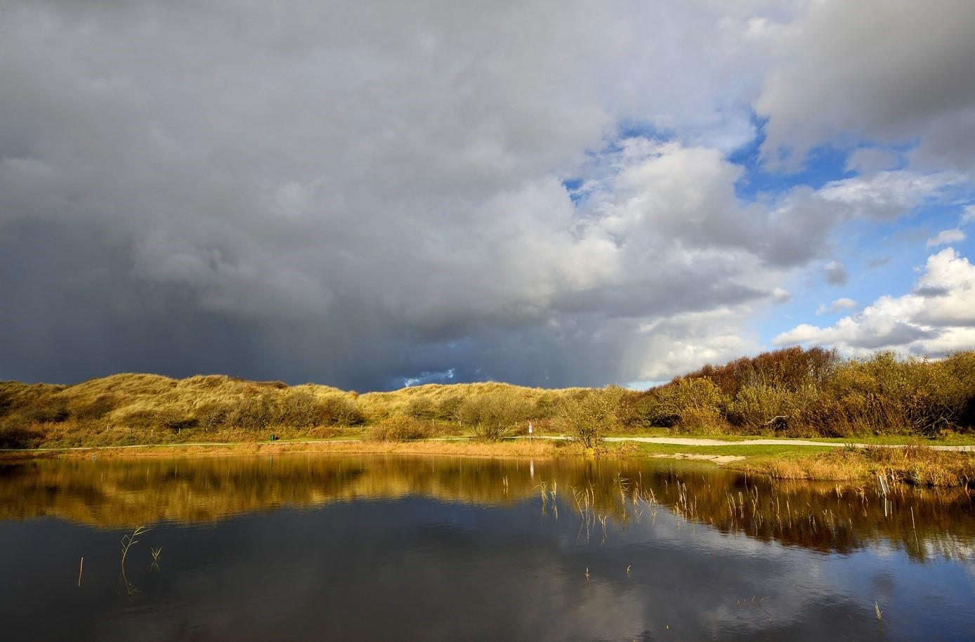 Waterwinning En Natuurbehoud In De Duinen: Daar Komen We Samen Uit!