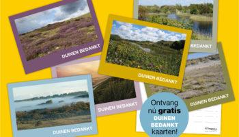 Het Is Zomer! Bestel Onze Gratis Speciale 'duinen Bedankt' Kaarten!