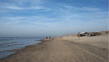 Strandpaviljoens Mogen Blijven Staan. De Winst Is Dubieus